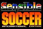 Sensible Soccer Online: International Edition