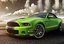 Shelby Drift