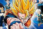Dragon Ball Z: The Legacy of Goku 2