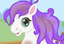 Cutie Pony Care