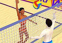 Summer Sports: Volleyball